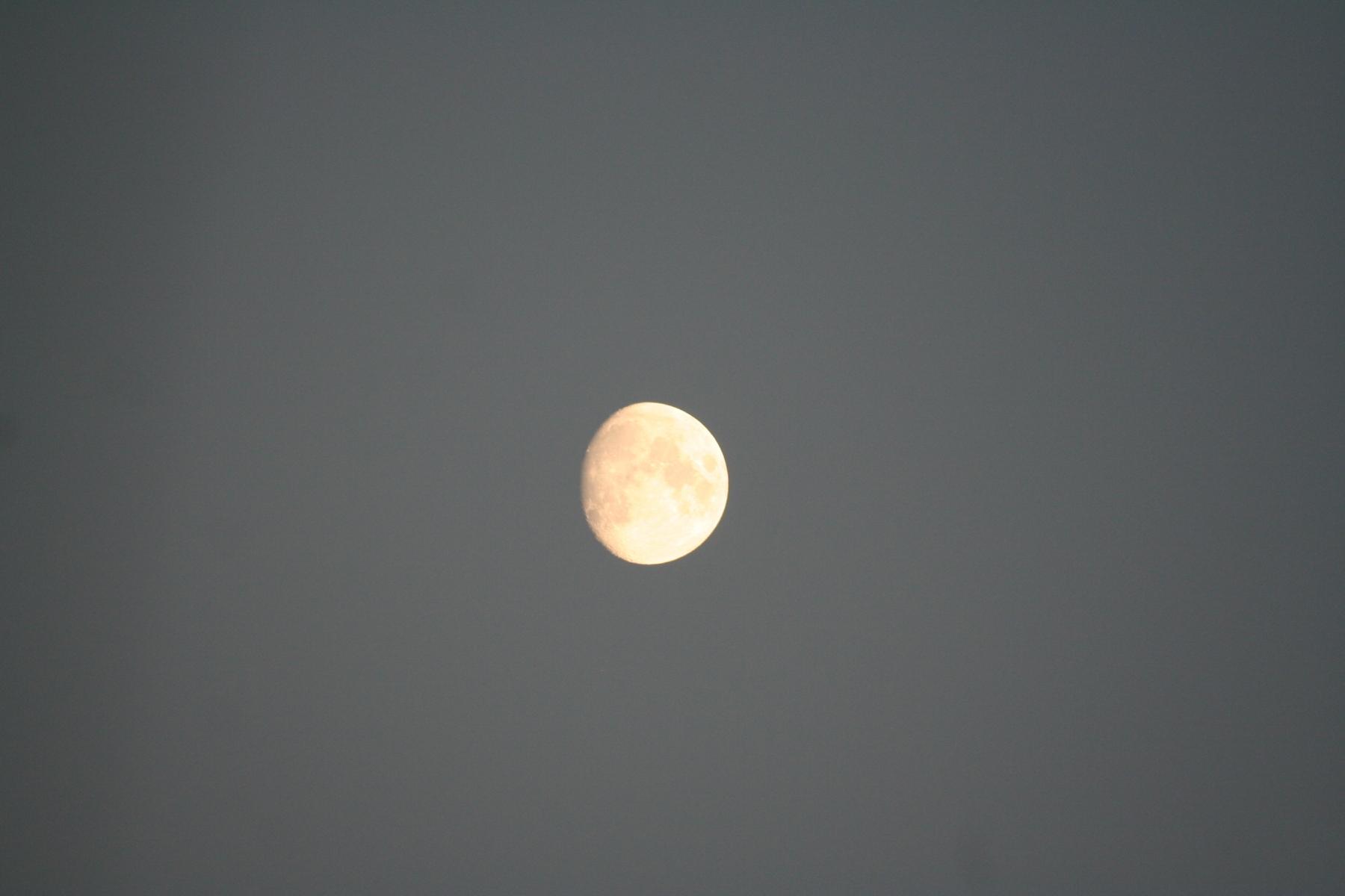 Mond-zunehmend