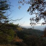 Naturbilder